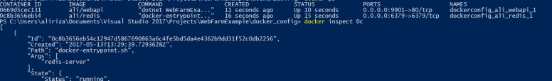 Docker command to get container ip